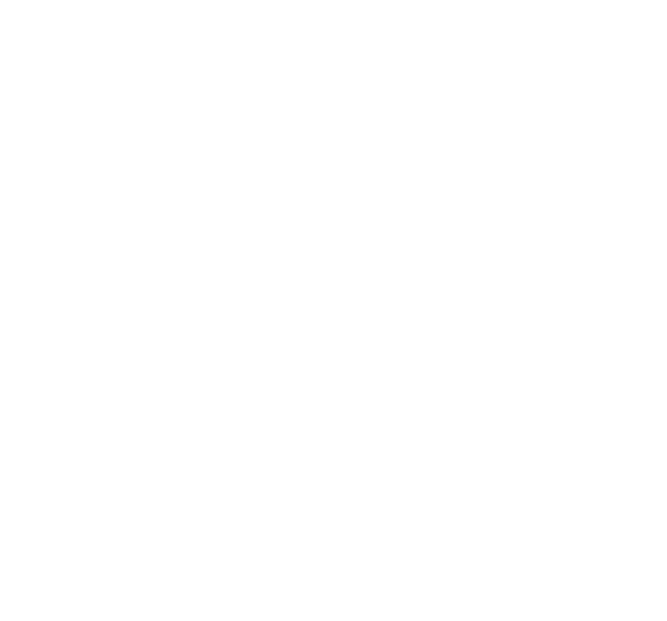 The Les Turner ALS Foundation • Care, Community, Cure